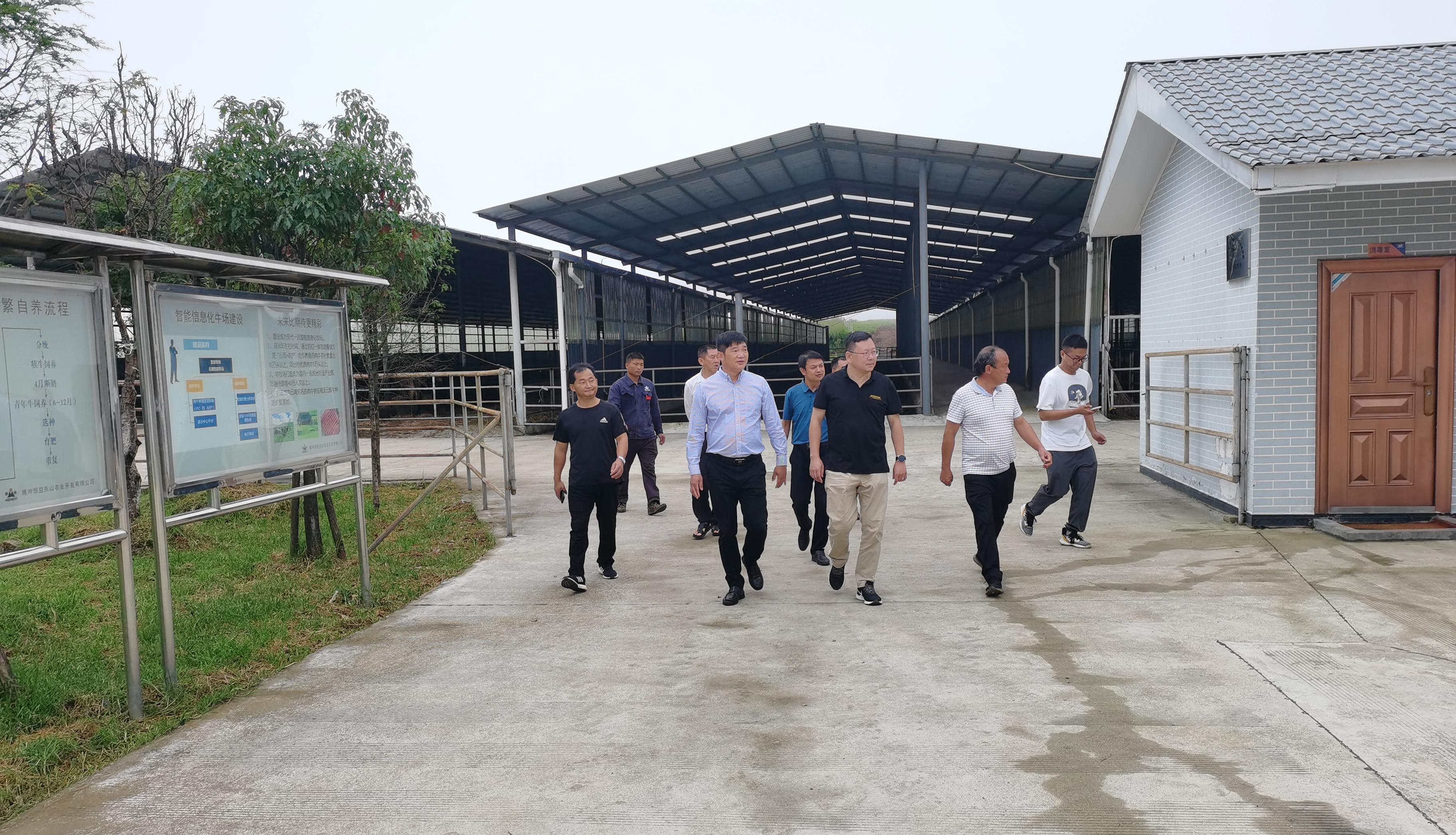 米6体育官网市政府李青海副市长一行莅临米6体育集团东山农业公司考察